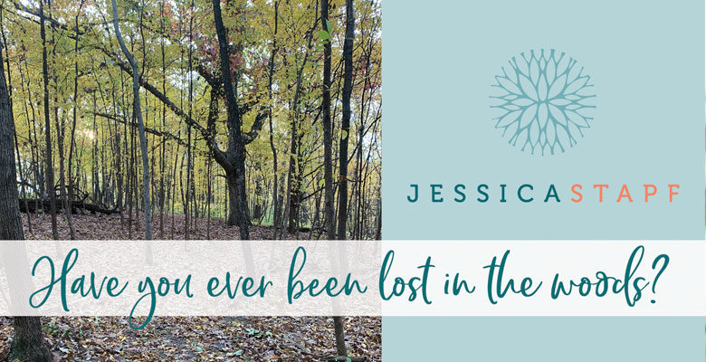 Have You Ever Been Lost in the Woods?